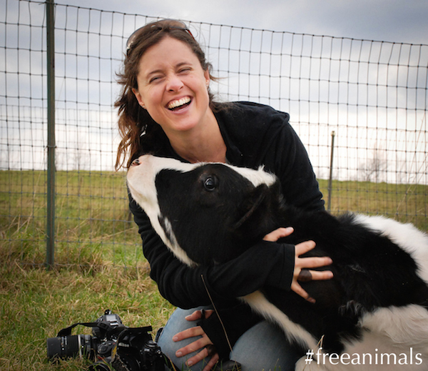 Jo-Anne McArthur laughs while playing with Orlando the cow.