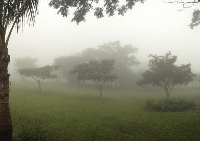 A foggy day in Ciudad Colon, Costa Rica.