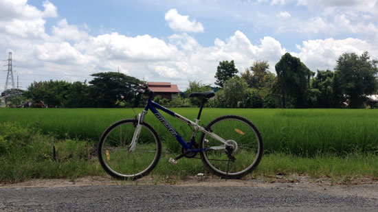 Cover for Biking in Chiang Mai