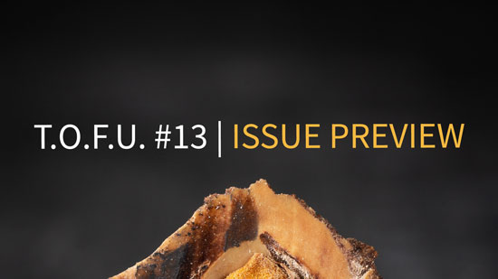 "Image contains a dark background with a peach pt in the middle. The pit has been cut open to show the light brown seed. Above the pit, there is text that says ""T.O.F.U. #13"" in white and ""Issue Preview"" in light brown."