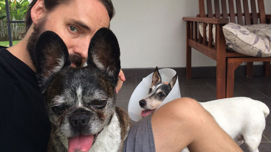 Image contains a photo of a man sitting on a floor with two dogs. One dog is on his lap and facing the camera with his tongue out, and the other is on the floor staring at the man.