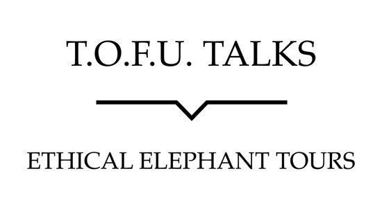 "Image contains a white background with black text that says ""T.O.F.U. Talks"" above a black line with a small indent in the centre pointing below to text that says ""Ethical Elephant Tours""."