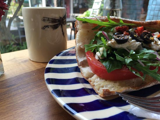 Image contains a photo of a banh mi sandwich with tomato, cilantro, herbs, greens, and a mix of cashew cheese on a plate with blue stripes. In the background, there is a mug with a dragonfly on it.