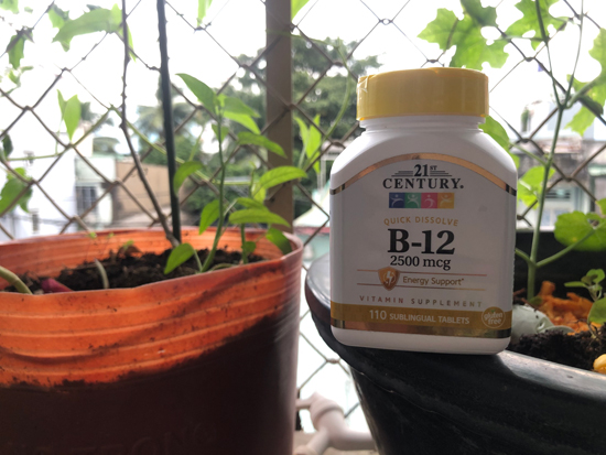 Image contains a photo of a vitamin B12 supplement bottle sitting on the edge of a pot. In the background, a number of leafy green plants can be seen.